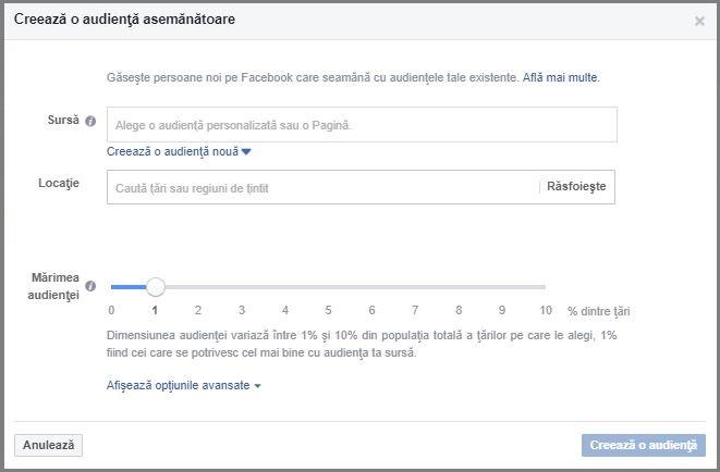 targetare facebook lookalike